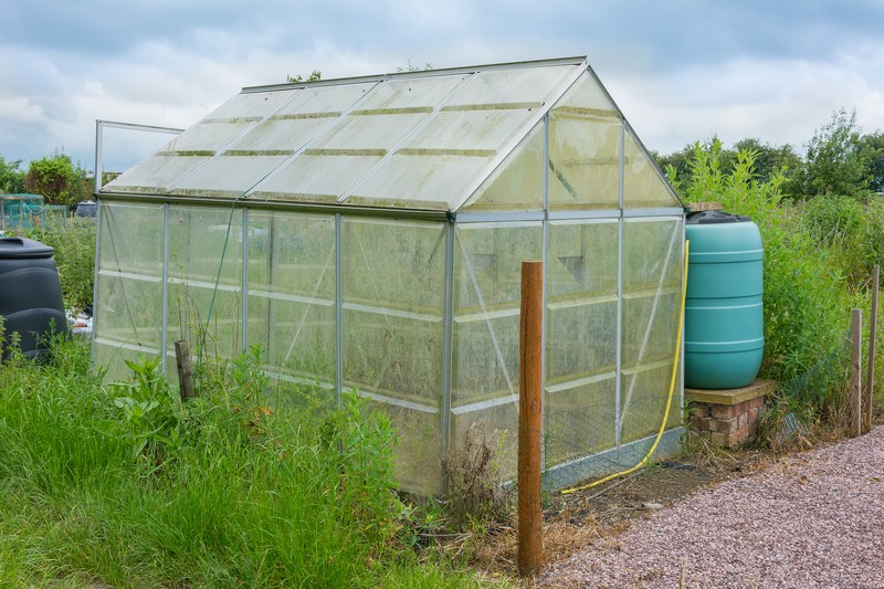 Check Out How You Can Make Your Own Green House For Less
