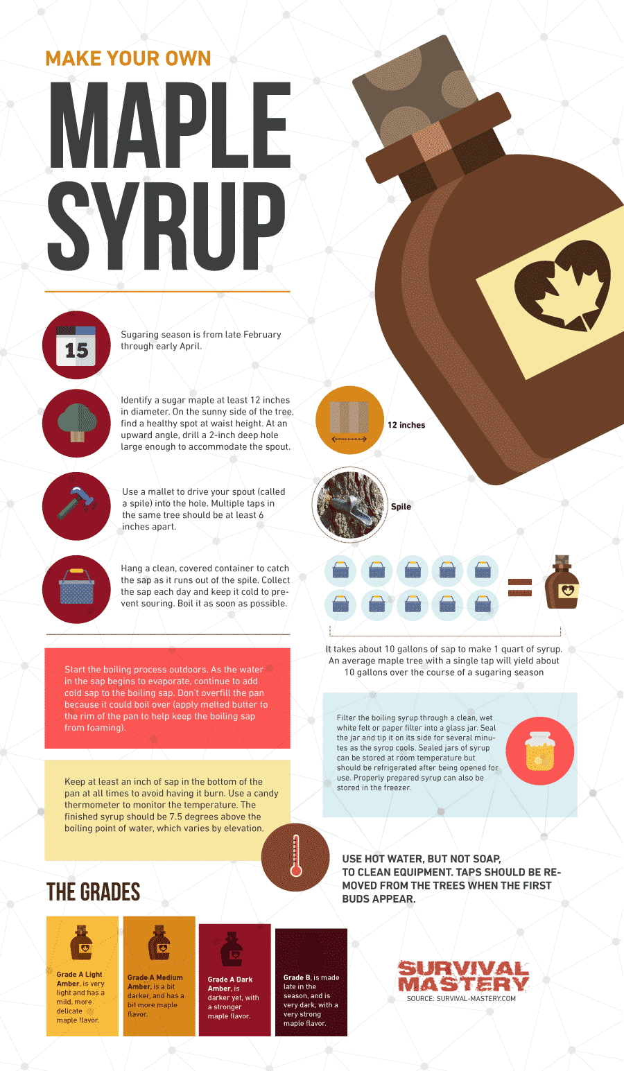 How To Make maple syrup infographic